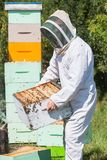 Male Beekeeper Carrying Honeycomb Crate Stock Images