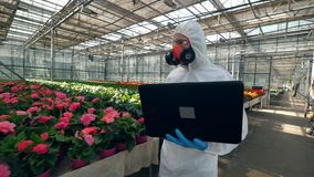 Male biologist with a laptop is walking along the blooming flowers