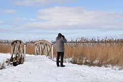 Male birder in winter season. Male birder watching in a marshland at the swedish island Oland stock image