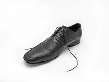 Male black leather shoe. Against white stock images