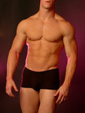 Male body Royalty Free Stock Images