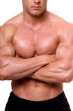 The male body. Royalty Free Stock Image