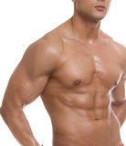The male body. Royalty Free Stock Photos