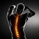 Male Body Backbone Scan Royalty Free Stock Images