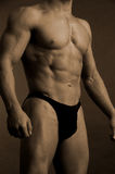 Male body builder royalty free stock photos