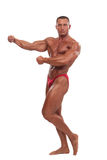 Male body builder demonstrating pose, isolated Royalty Free Stock Photo