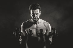 Male body builder working out with dumbbells Stock Images