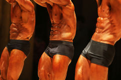 Male body builders. Pose showing their abdominal muscles Royalty Free Stock Photography