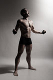 Male Body Royalty Free Stock Photo