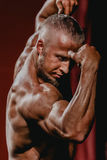 Male bodybuilder biceps straining hands Royalty Free Stock Photography