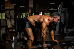 Male bodybuilder doing heavy weight exercise for back Royalty Free Stock Images