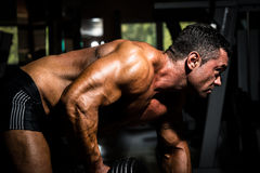 Male bodybuilder doing heavy weight exercise for back Stock Images
