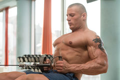 Male Bodybuilder Doing Heavy Weight Exercise For Back Stock Image