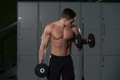 Male Bodybuilder Doing Heavy Weight Exercise For Biceps Stock Image