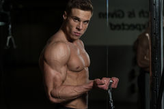 Male Bodybuilder Doing Heavy Weight Exercise For Biceps Stock Photography