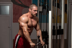 Male Bodybuilder Doing Heavy Weight Exercise For Triceps Royalty Free Stock Photo