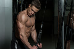 Male Bodybuilder Doing Heavy Weight Exercise For Triceps Royalty Free Stock Photography