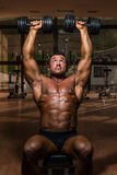 Male bodybuilder doing shoulder press whit dumbbell Royalty Free Stock Image