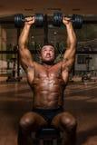 Male bodybuilder doing shoulder press whit dumbbell. Male body builder doing shoulder press whit dumbbell royalty free stock image