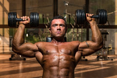 Male bodybuilder doing shoulder press whit dumbbell Royalty Free Stock Photos