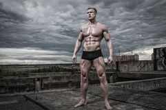 Male bodybuilder Stock Photography