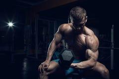 Male bodybuilder, fitness model Royalty Free Stock Photos