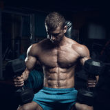 Male bodybuilder, fitness model Stock Photography