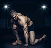Male bodybuilder, fitness model Royalty Free Stock Photos