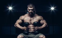 Male bodybuilder, fitness model Stock Photography