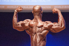 Male bodybuilder flexes his muscles and shows his best physique Stock Images