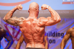 Male bodybuilder flexes his muscles and shows his best physique Stock Photos