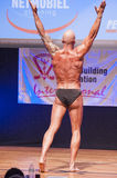Male bodybuilder flexes his muscles and shows his best physique Royalty Free Stock Photo