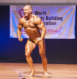 Male bodybuilder flexes his muscles and shows his best physique Royalty Free Stock Photography