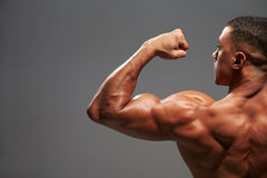 Male bodybuilder flexing bicep, back view with copy space Royalty Free Stock Image