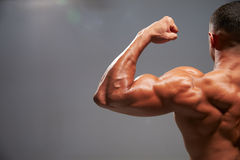 Male bodybuilder flexing bicep, back view with copy space Royalty Free Stock Images