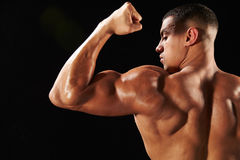 Male bodybuilder flexing bicep, back view with copy space Royalty Free Stock Photos