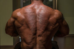 Male bodybuilder flexing his back Stock Photo