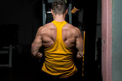 Male bodybuilder flexing his back Royalty Free Stock Image