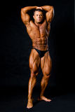 A male bodybuilder flexing his muscles. Stock Photos