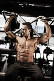 Male bodybuilder lifting weight Royalty Free Stock Photos