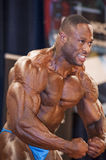 Male bodybuilder Michael Muzo shows his most muscular pose Royalty Free Stock Image
