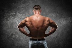 Male bodybuilder with naked torso posing in gym royalty free stock images