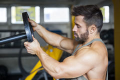 Male bodybuilder preparing the weight Stock Image