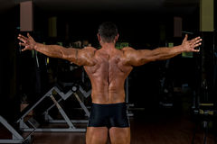 Male bodybuilder showing his arms Stock Image