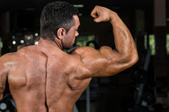 Male bodybuilder showing his biceps Royalty Free Stock Photo