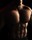Male BodyBuilder Torso Digital Illustration. A Digital Illustration of a male bodybuilder's torso in dynamic light and shadow Stock Photography