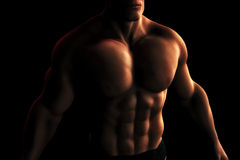 Male BodyBuilder Torso Digital Illustration. A Digital Illustration of a male bodybuilder's torso in dynamic light and shadow Stock Image