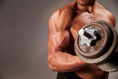 Male bodybuilder working out with a  heavy dumbbell, crop detail Stock Images