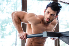 Male bodybuilder workout on parallel bars Stock Photo