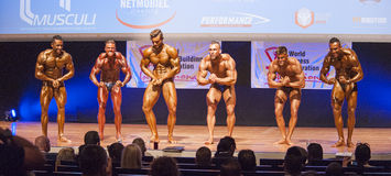 Male bodybuilders flex their muscles and show their best physiqu Royalty Free Stock Images
